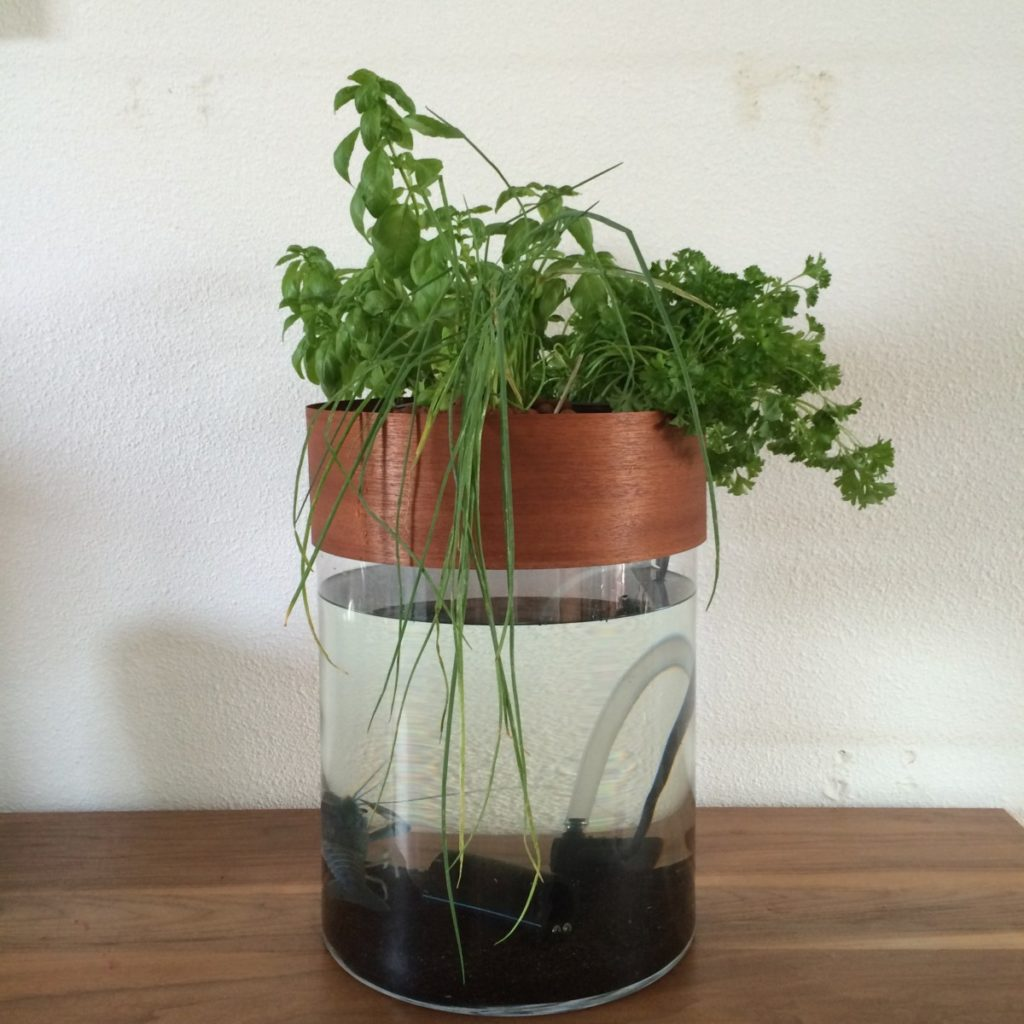 Prototype 2 mini Aquaponics